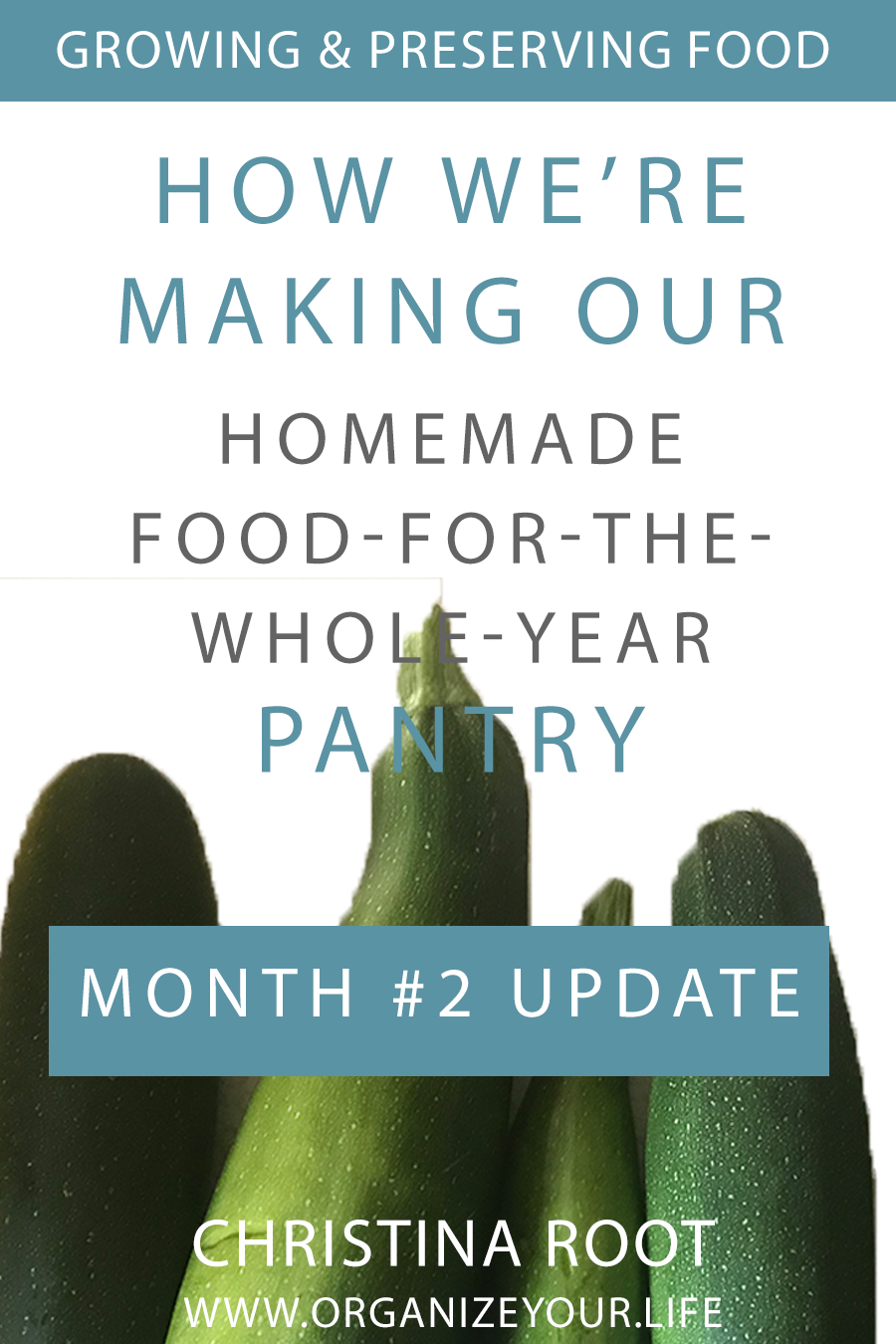 Second Month Update: Creating Our Homemade Pantry