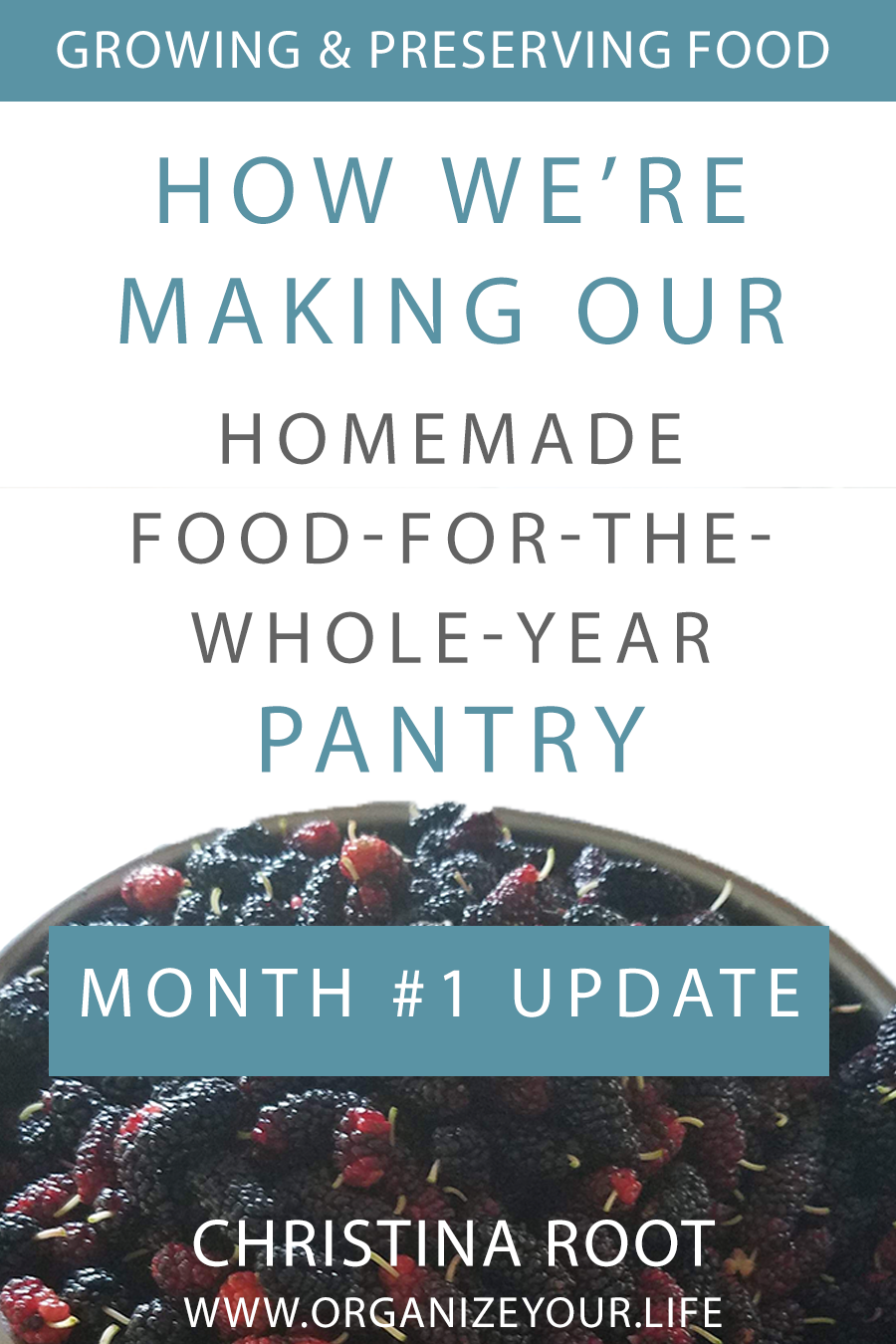 First Month Update: Creating Our Homemade Pantry