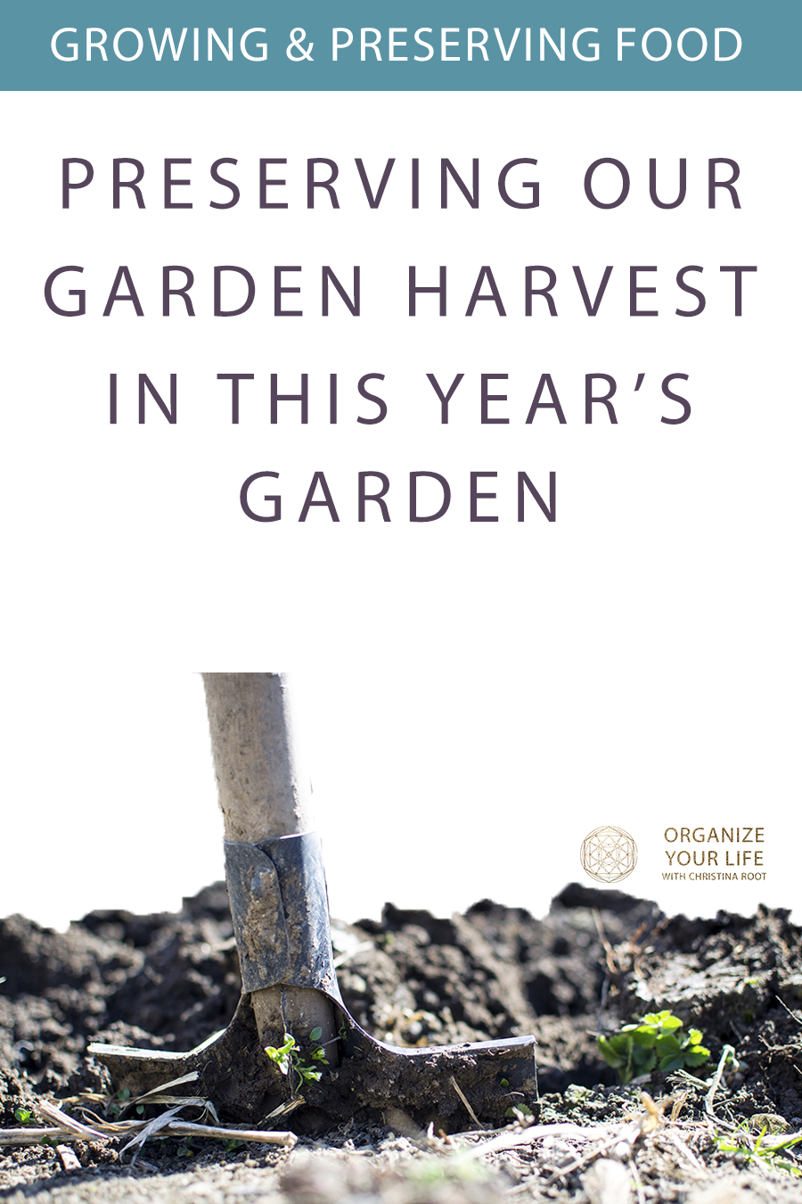 How we're planning to preserve our garden harvest in 2020